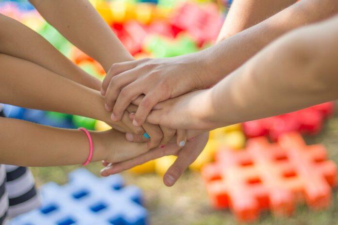 cooperativa sociale e servizi